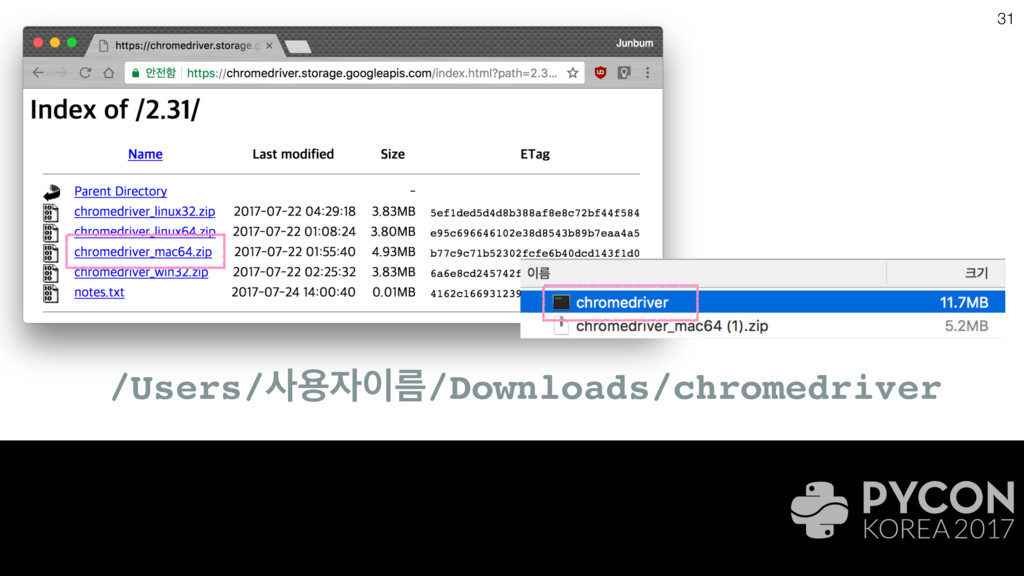 31 /Users/ਊܴ/Downloads/chromedriver