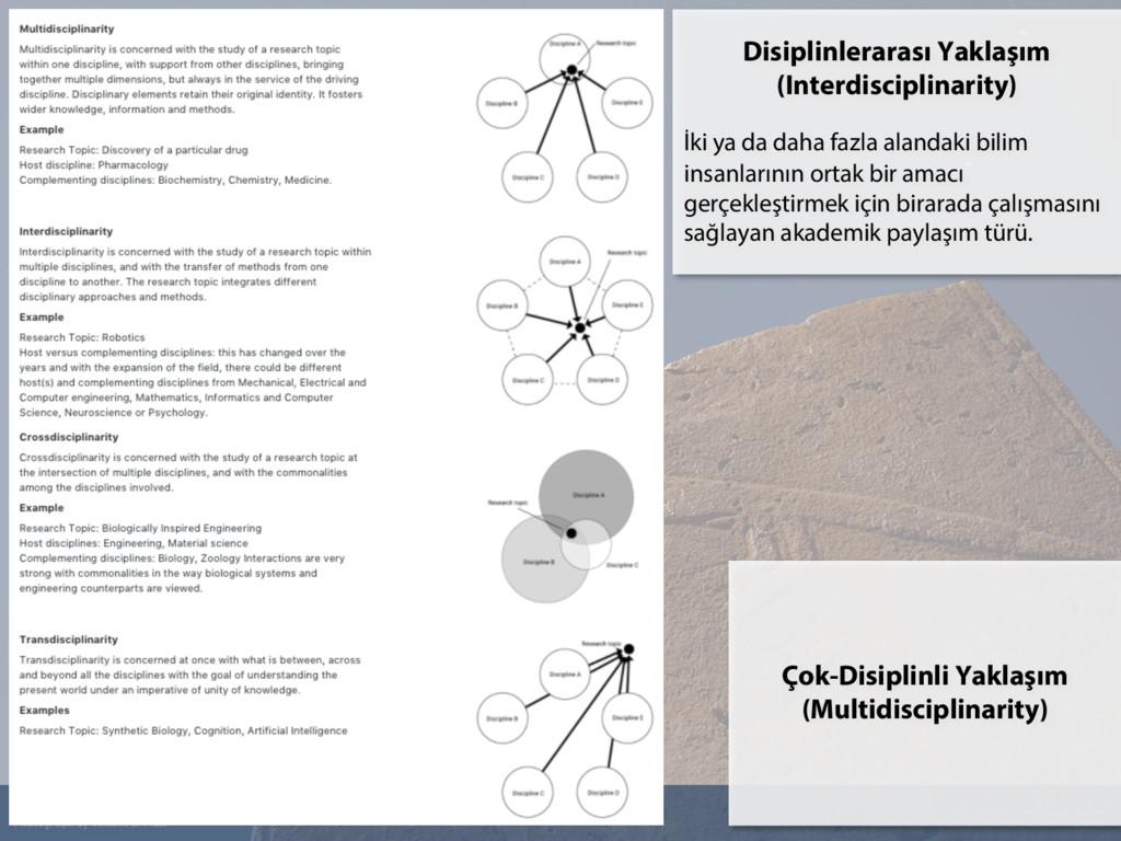 34 Çok-Disiplinli Yaklaşım (Multidisciplinarity...