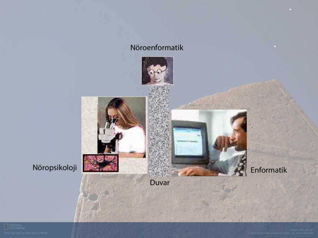 Duvar Enformatik Nöropsikoloji Nöroenformatik