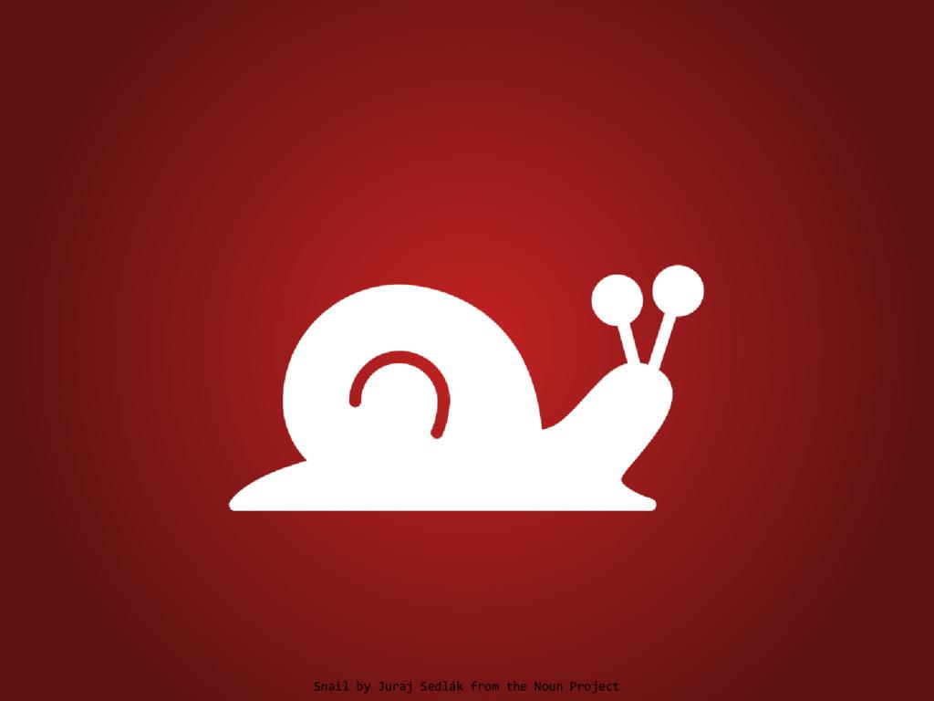 Snail by Juraj Sedlák from the Noun Project