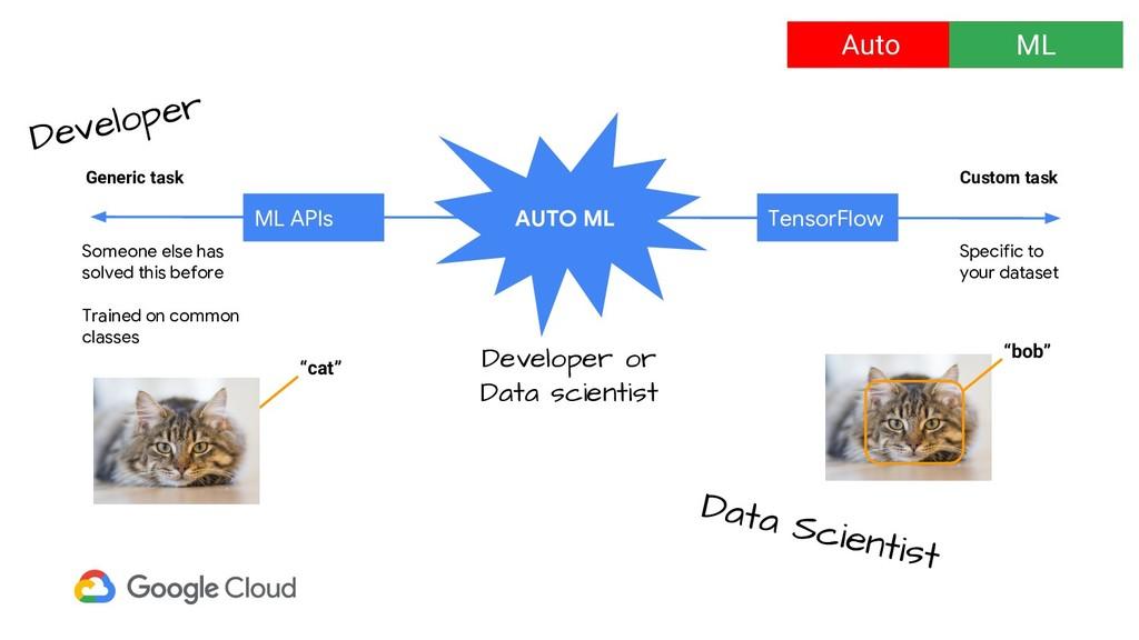 Auto ML Custom task Generic task Someone else h...