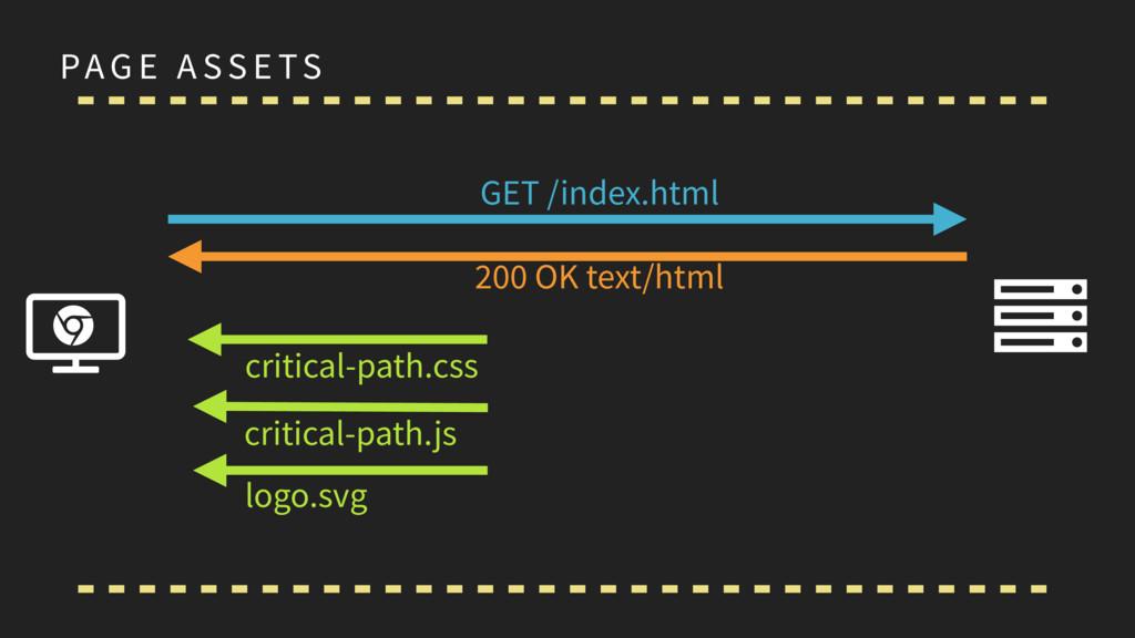 PAG E A SS E TS Ɇ Ȑ ɂ GET /index.html 200 OK te...