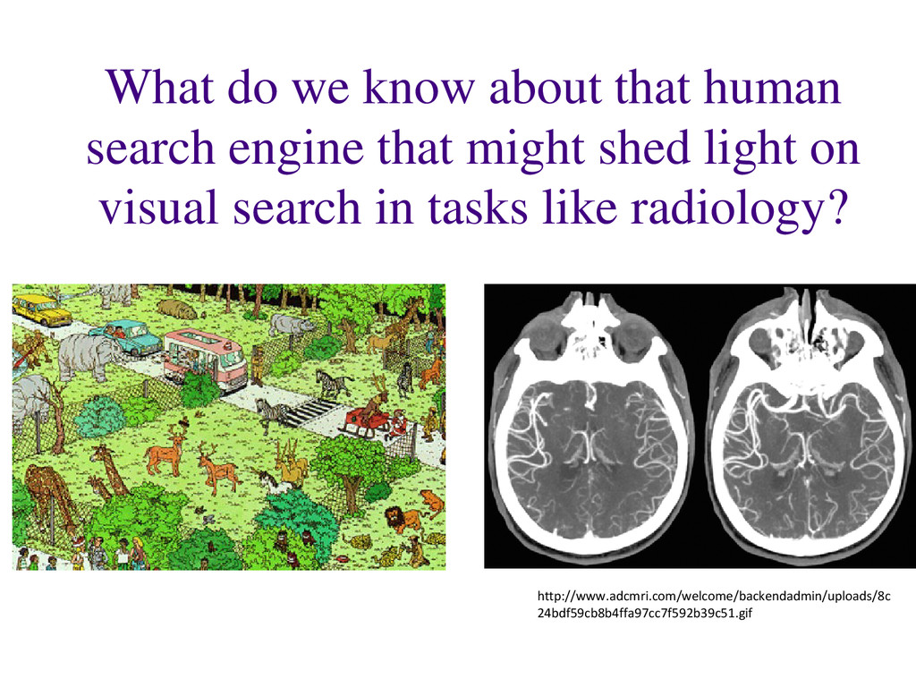 What do we know about that human search engine ...