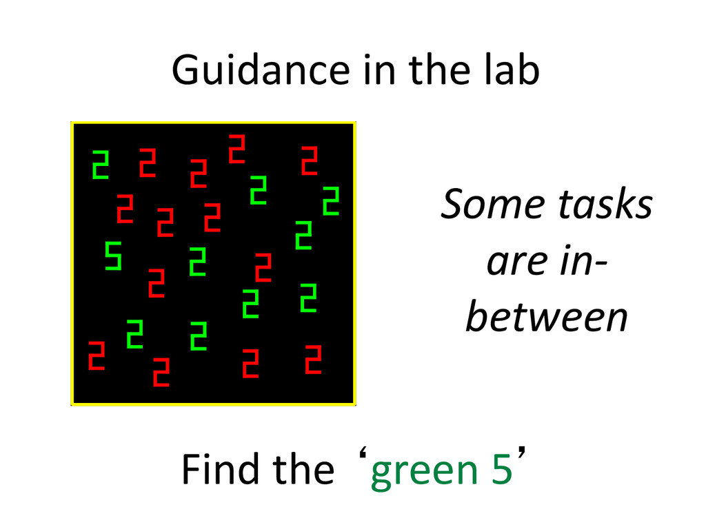 Guidance in the lab Find the 'green 5' Some tas...
