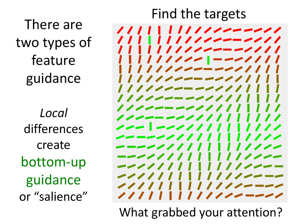 There are two types of feature guidance Local d...