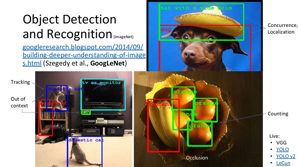 Object Detection and Recognition (ImageNet) goo...