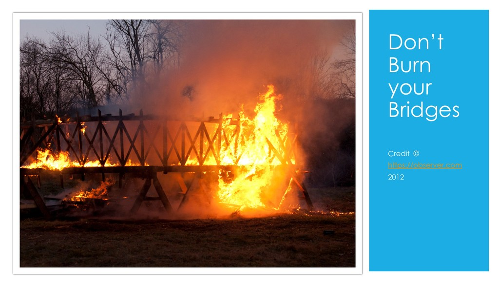 Don't Burn your Bridges Credit © https://observ...