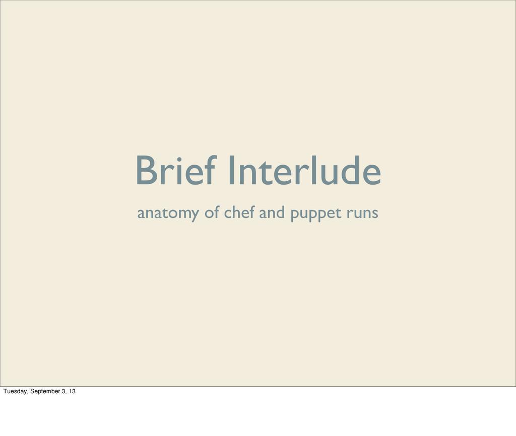 Brief Interlude anatomy of chef and puppet runs...