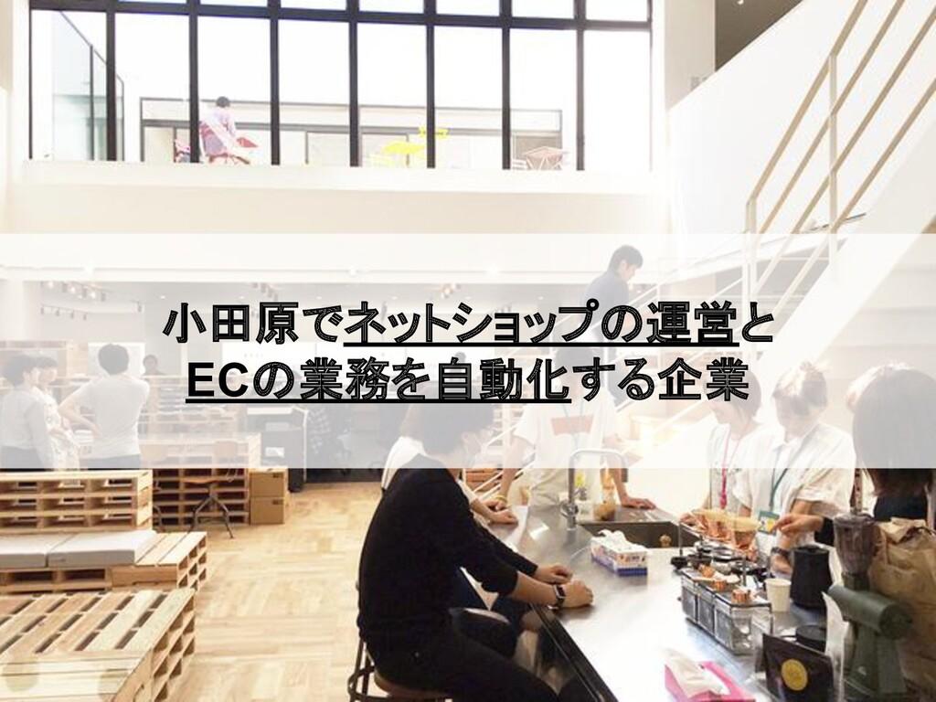 小田原でネットショップの運営と ECの業務を自動化する企業