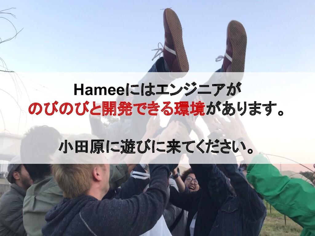 Hameeにはエンジニアが のびのびと開発できる環境があります。 小田原に遊びに来てください。