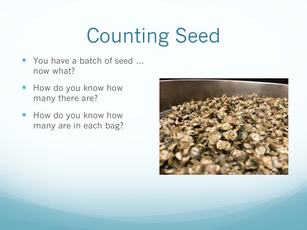 Counting Seed — You have a batch of seed … now ...