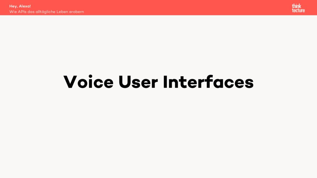 Voice User Interfaces Wie APIs das alltägliche ...