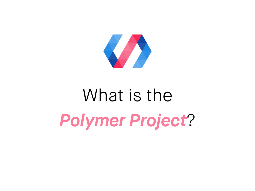 What is the Polymer Project?