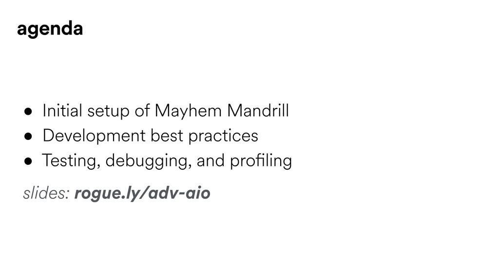 • Initial setup of Mayhem Mandrill • Developmen...