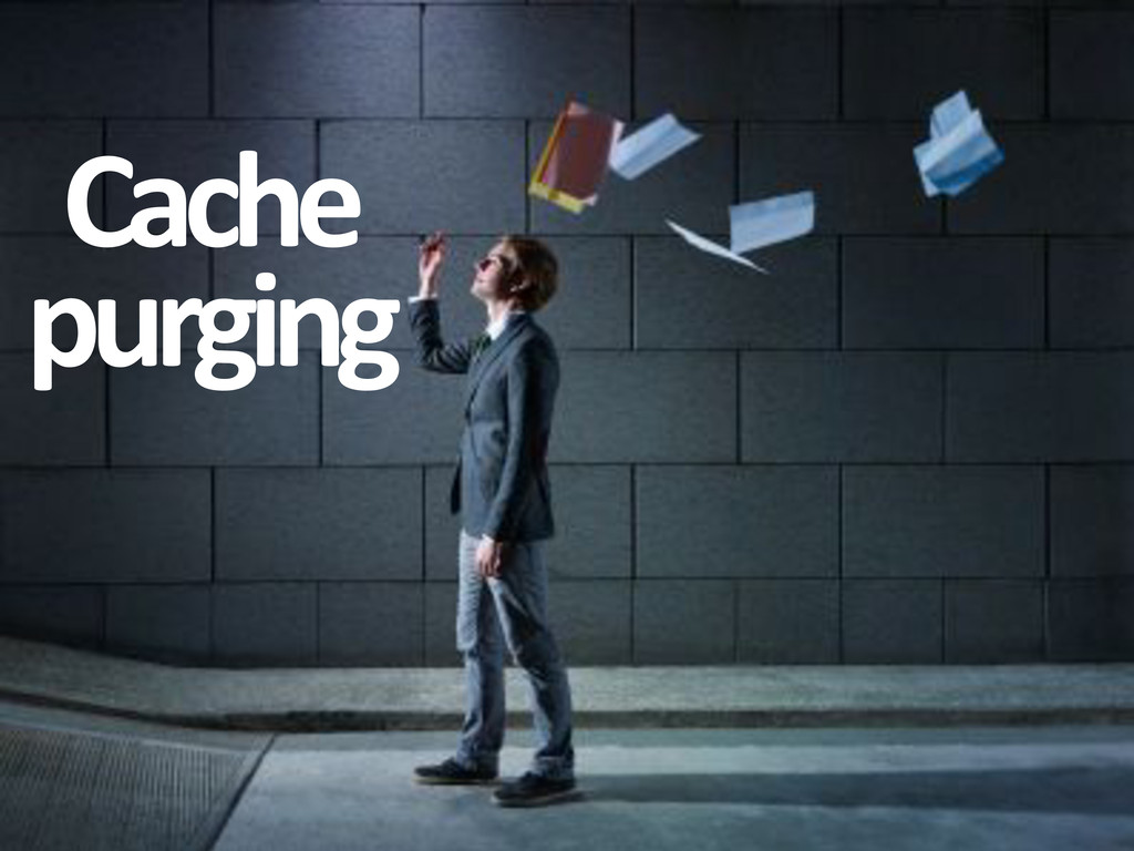 Cache& purging