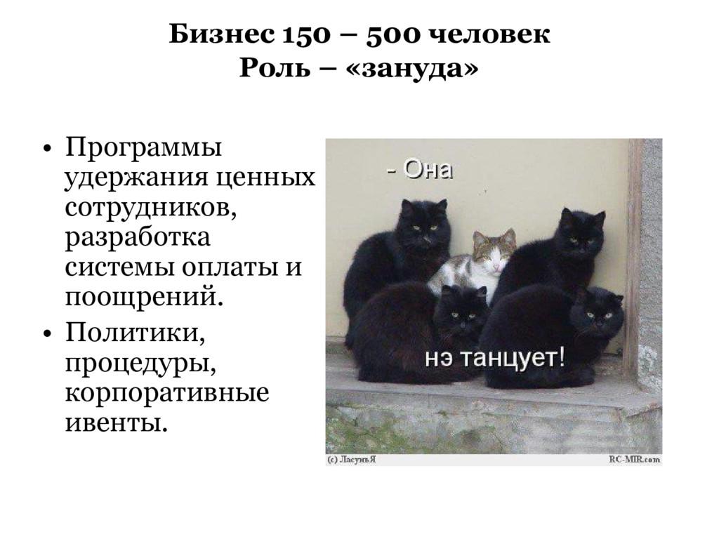 Бизнес 150 – 500 человек Роль – «зануда» • Прог...