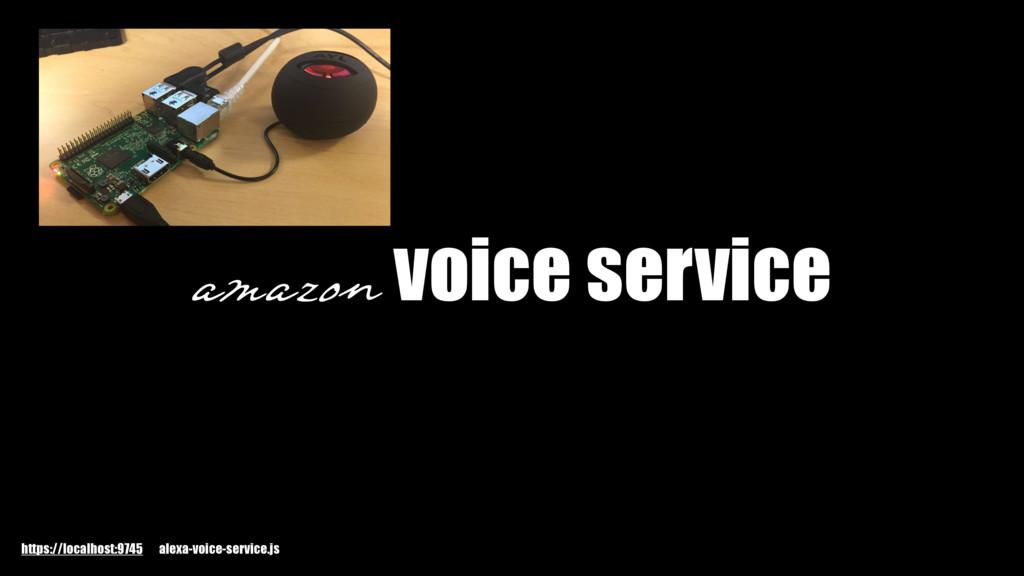 amazon voice service https://localhost:9745 ale...