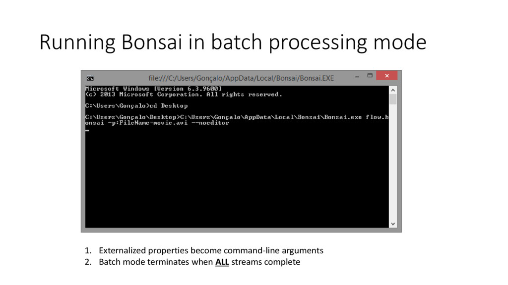 Running Bonsai in batch processing mode 1. Exte...