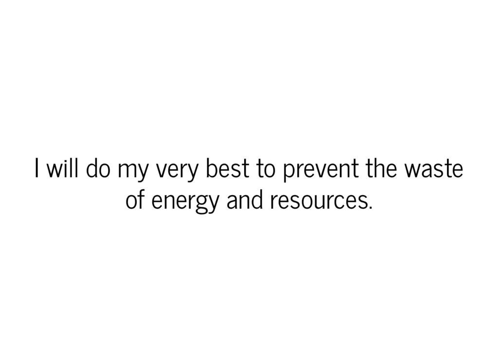 I will do my very best to prevent the waste of ...