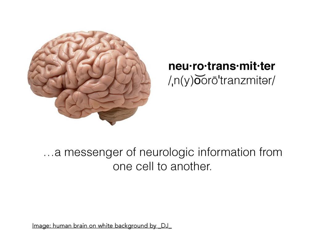 neu·ro·trans·mit·ter! /ˌn(y)o͝orōˈtranzmitər/ I...