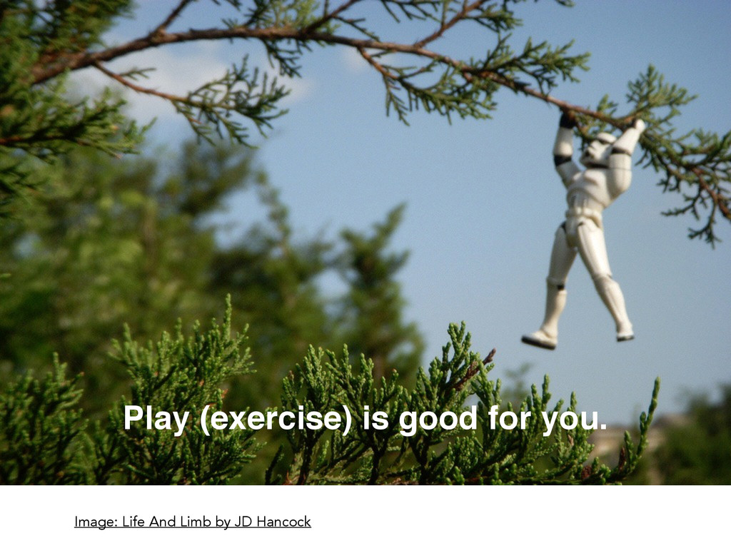 Play (exercise) is good for you. Image: Life An...