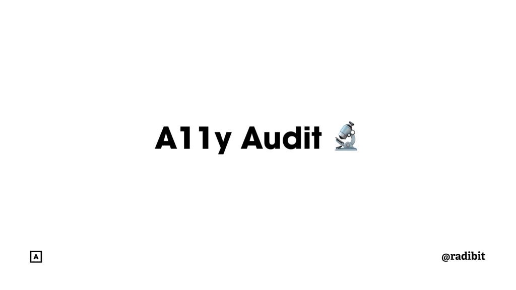 @radibit A11y Audit