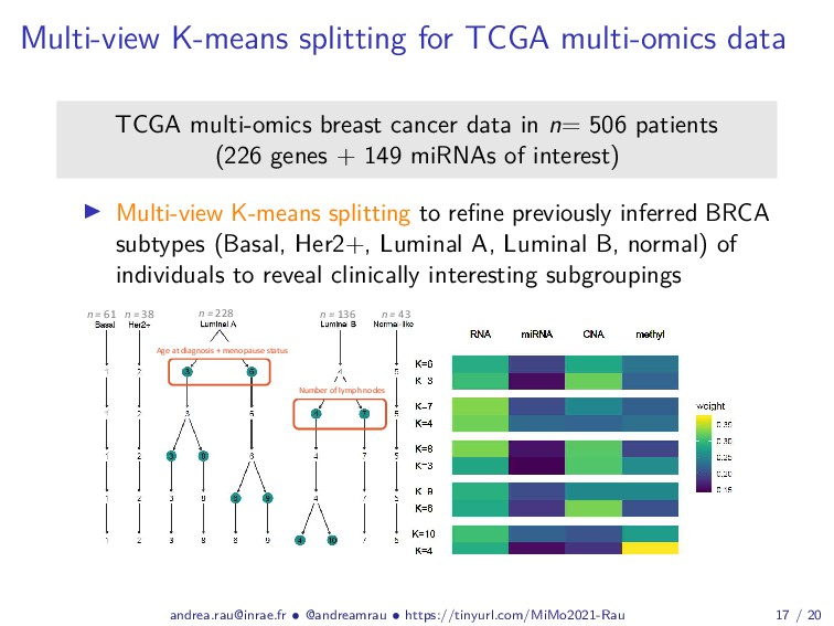 Multi-view K-means splitting for TCGA multi-omi...