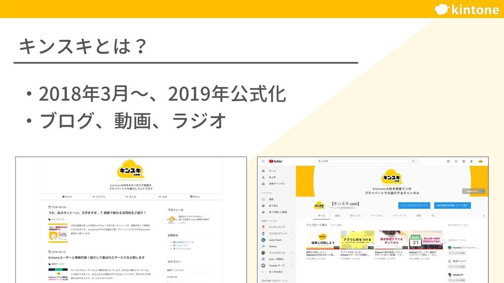 キンスキとは? ・2018年3月〜、2019年公式化 ・ブログ、動画、ラジオ