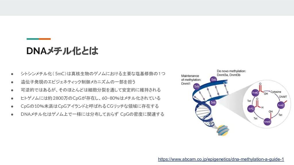DNAメチル化とは ● シトシンメチル化(5mC)は真核生物のゲノムにおける主要な塩基修飾の1...