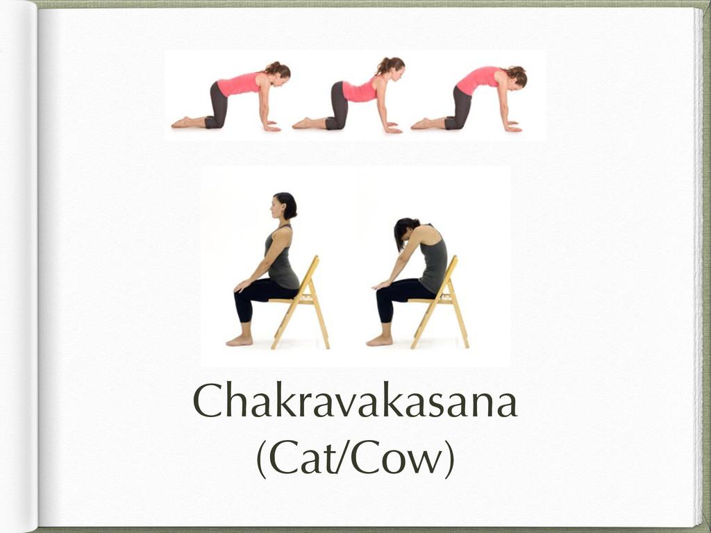 Chakravakasana (Cat/Cow)
