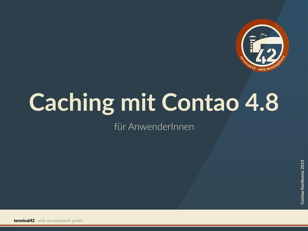 terminal42 web development gmbh für AnwenderInn...