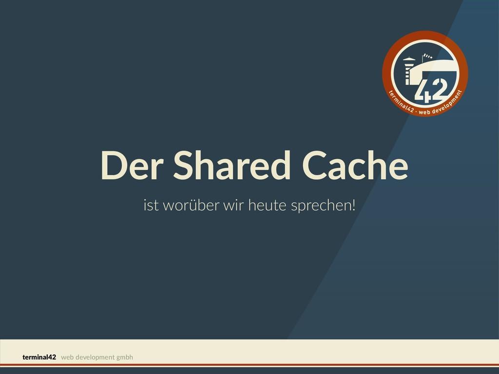 terminal42 web development gmbh Der Shared Cach...