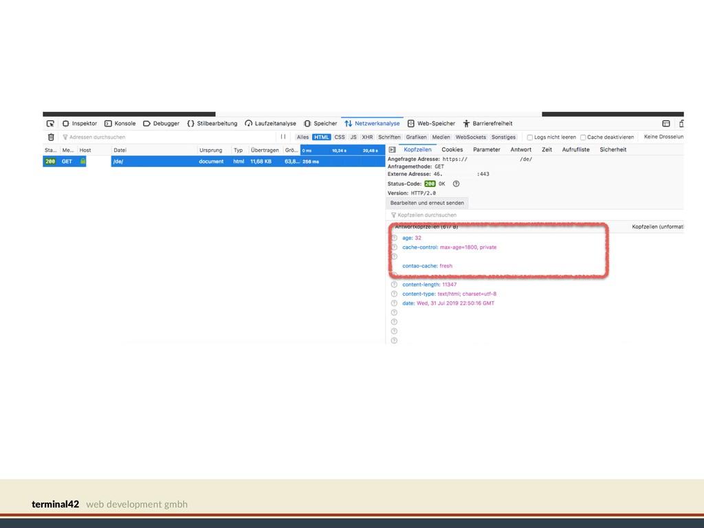 terminal42 web development gmbh