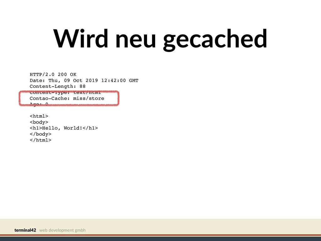 terminal42 web development gmbh Wird neu gecach...