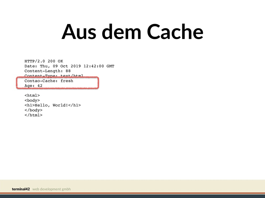 terminal42 web development gmbh Aus dem Cache H...