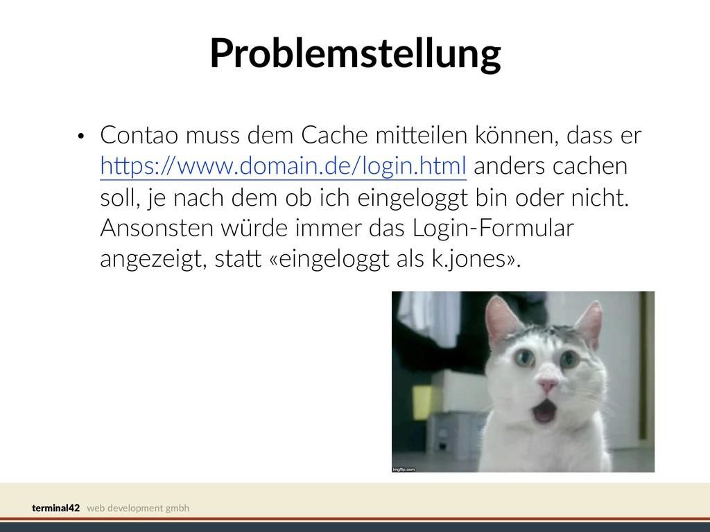 terminal42 web development gmbh Problemstellung...