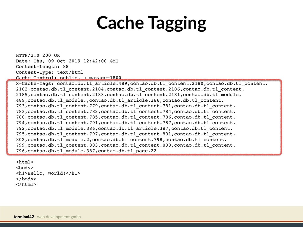 terminal42 web development gmbh Cache Tagging H...
