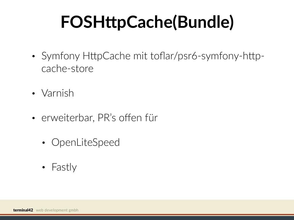 terminal42 web development gmbh FOSHCpCache(Bun...