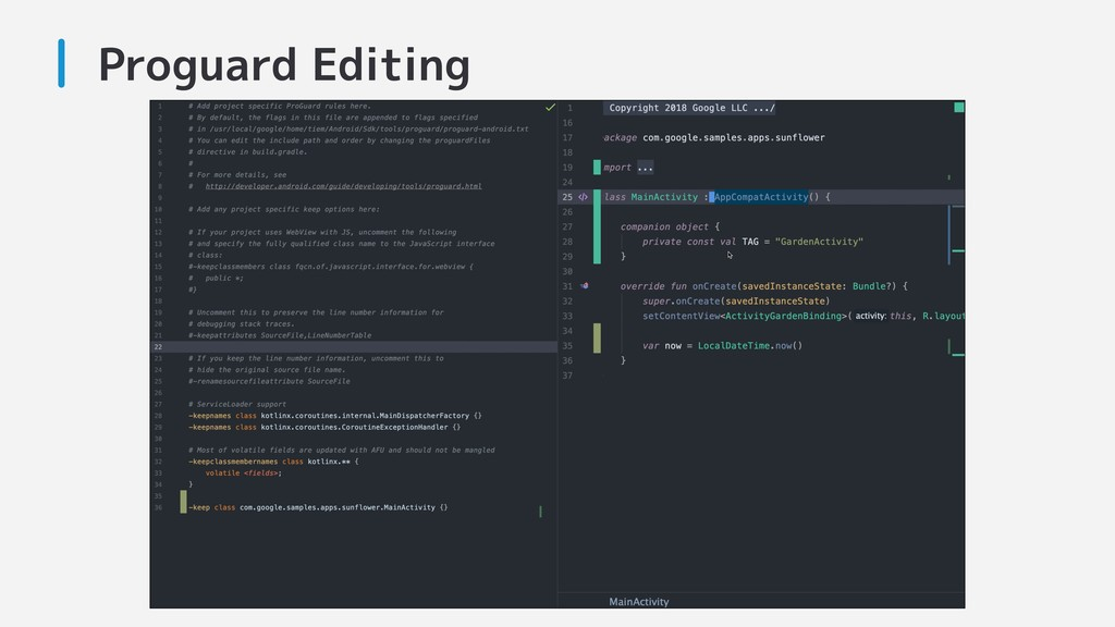 Proguard Editing