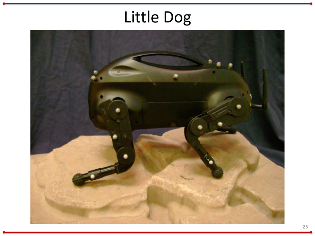 Little Dog 25
