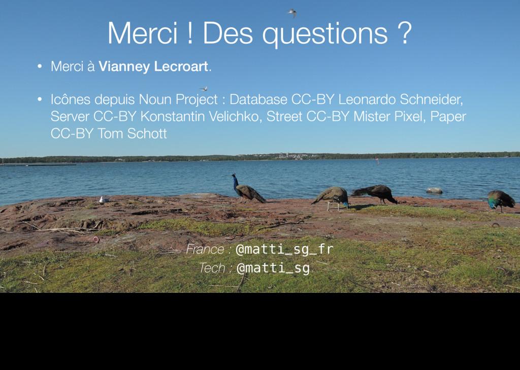 • Merci à Vianney Lecroart. • Icônes depuis Nou...