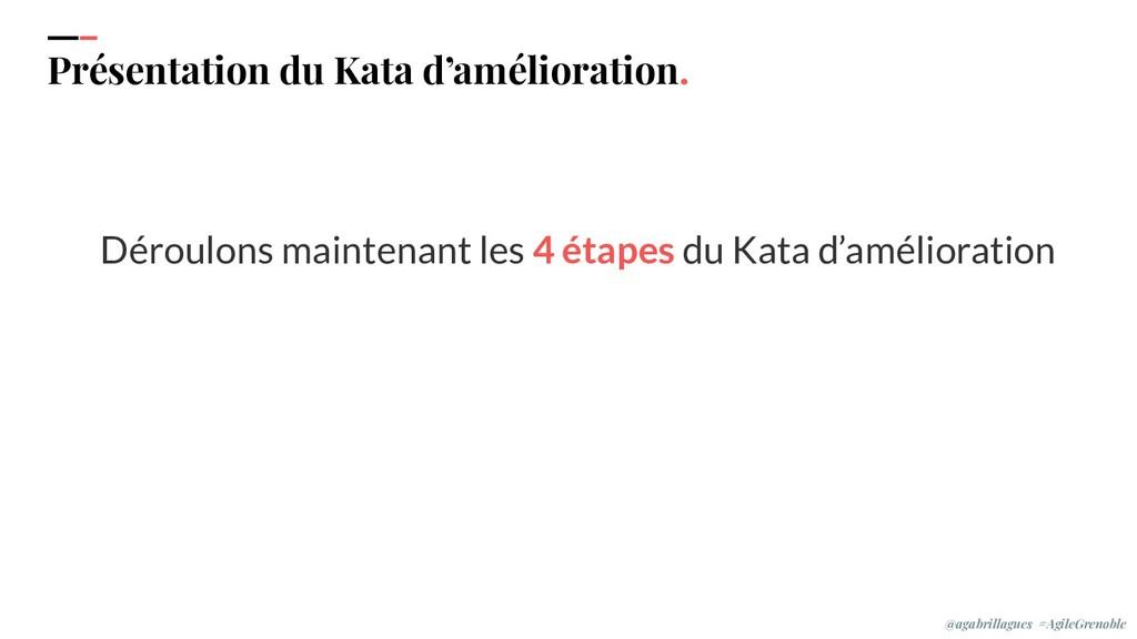 IPPON 2019 Présentation du Kata d'amélioration....