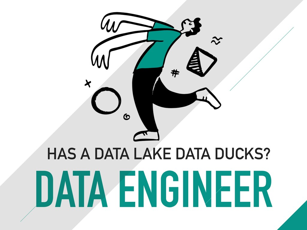 DATA ENGINEER HAS A DATA LAKE DATA DUCKS?