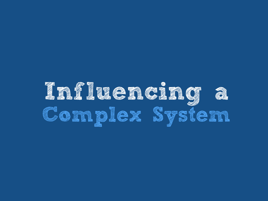 Influencing a Complex System