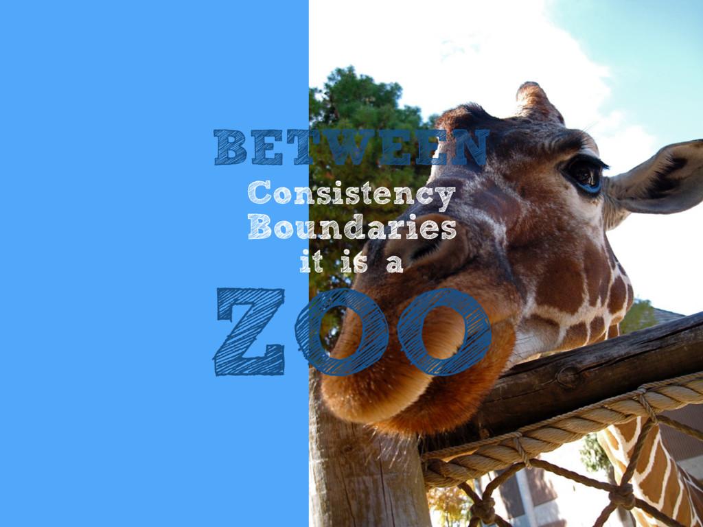 BETWEEN Consistency Boundaries it is a ZOO