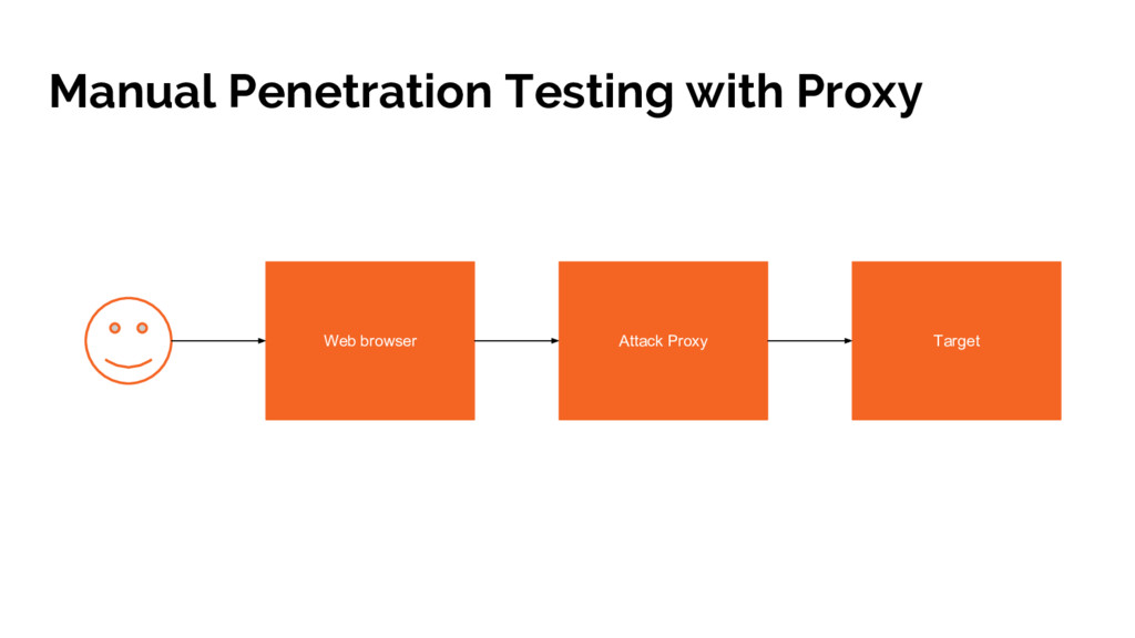Manual Penetration Testing with Proxy Web brows...