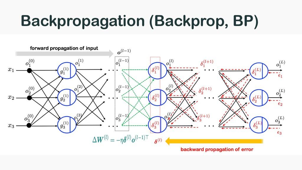 Backpropagation (Backprop, BP)