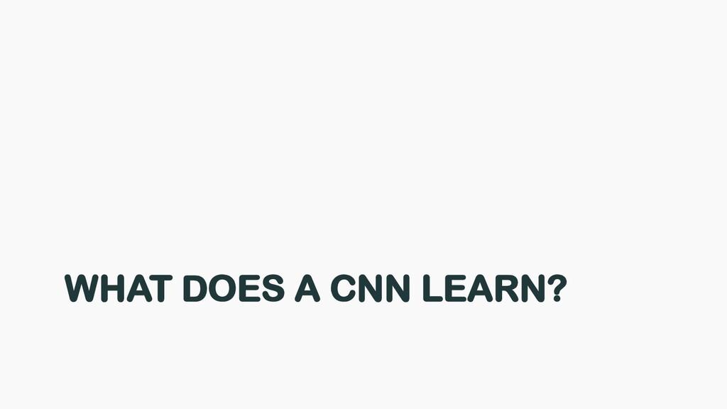 WHAT DOES A CNN LEARN?