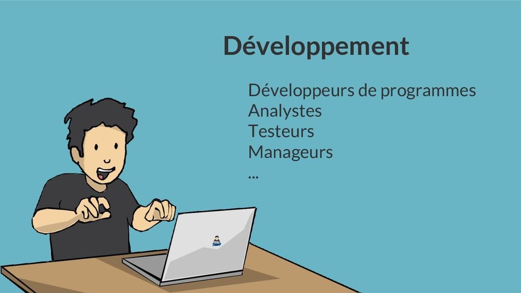 Développement Développeurs de programmes Analys...