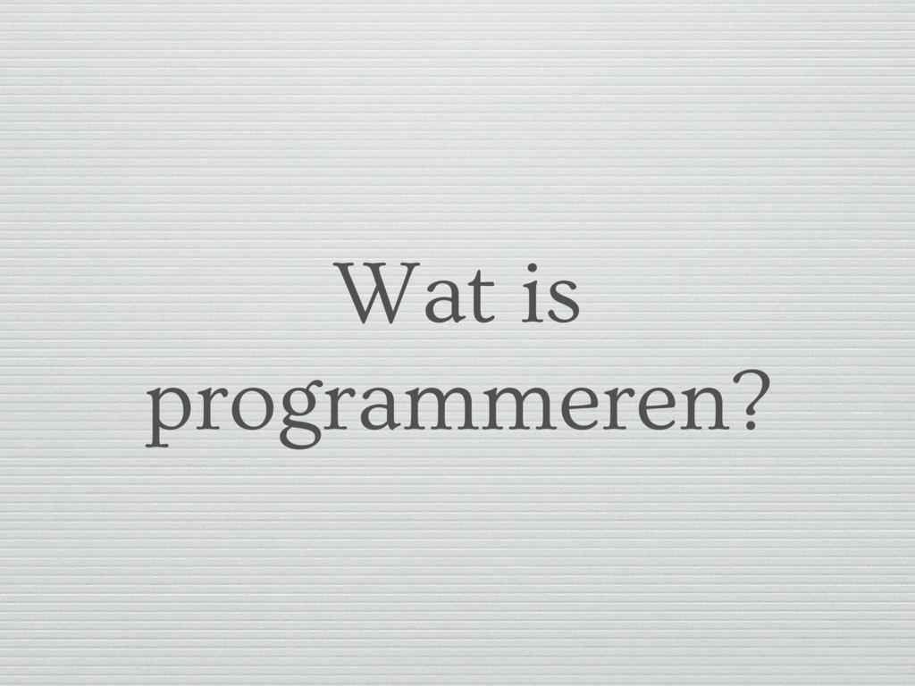 Wat is programmeren?